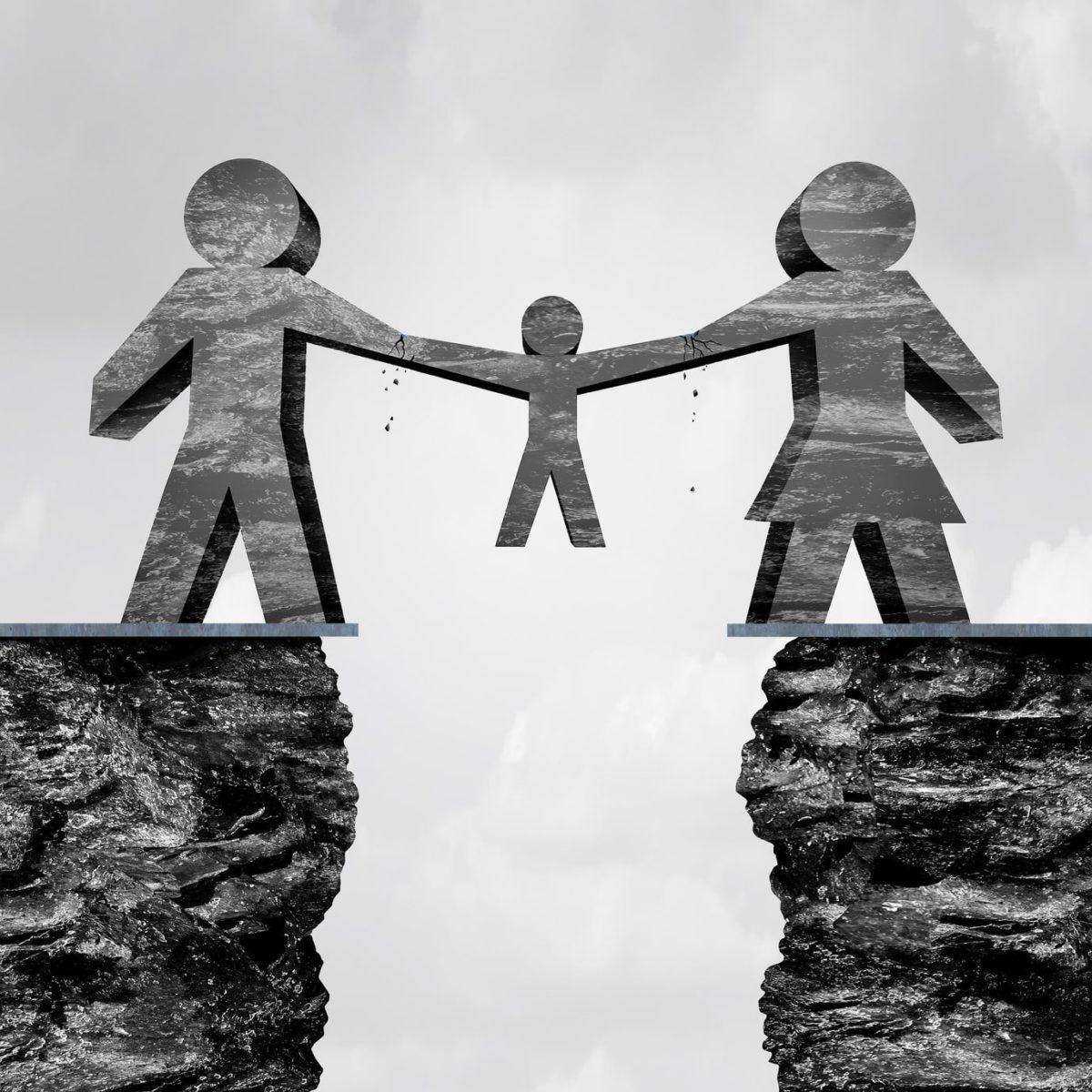 guardianship vs custody