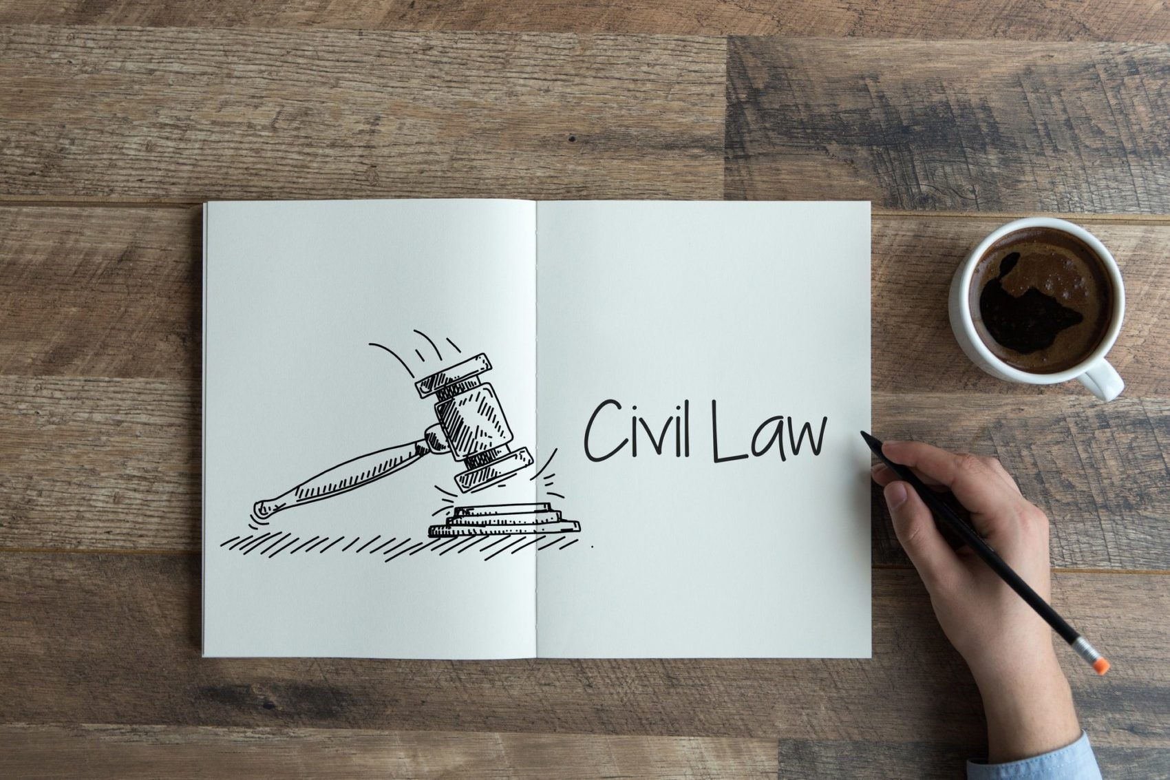 civil litigation lawyer