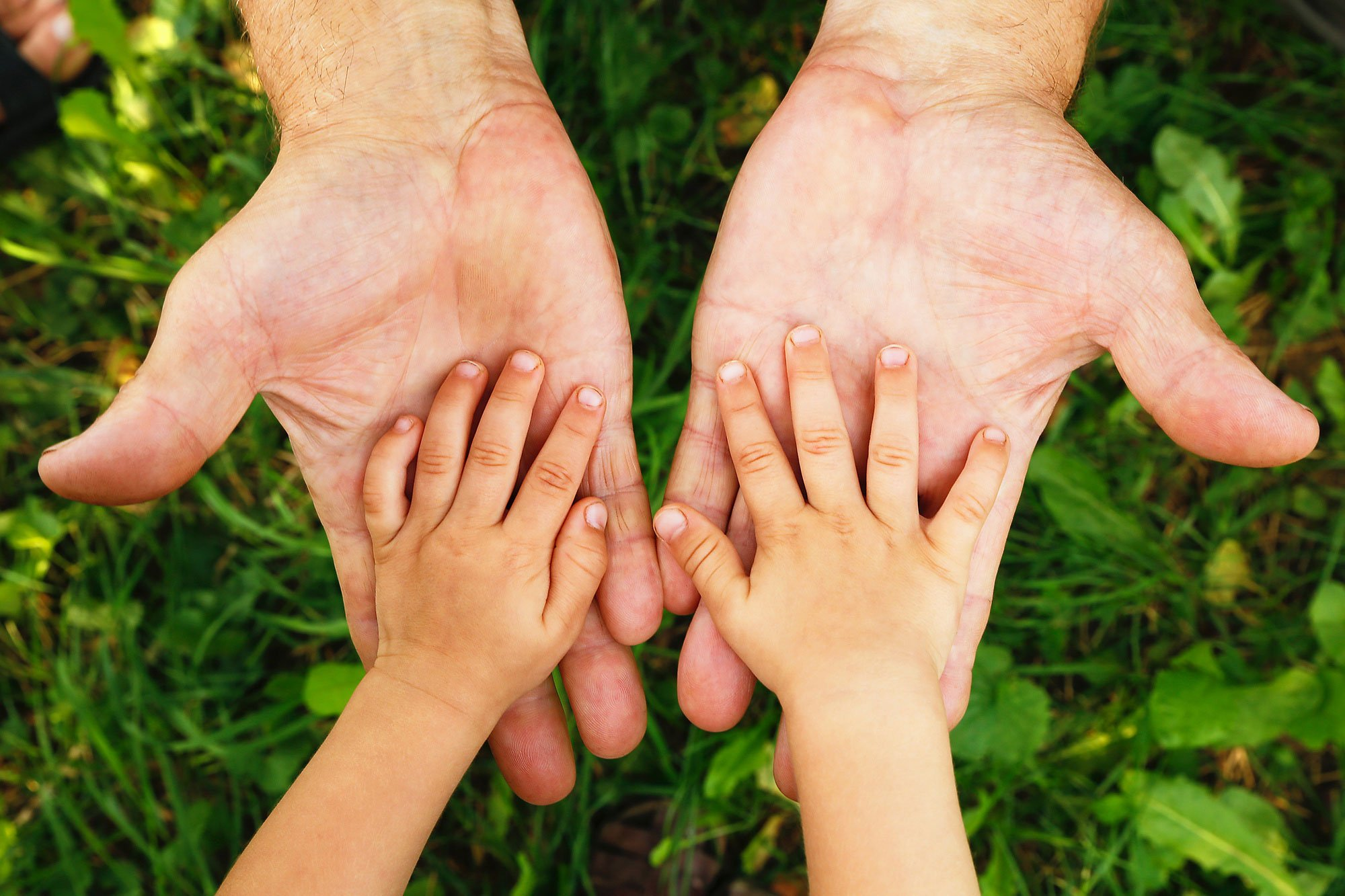 how to become primary custodial parent